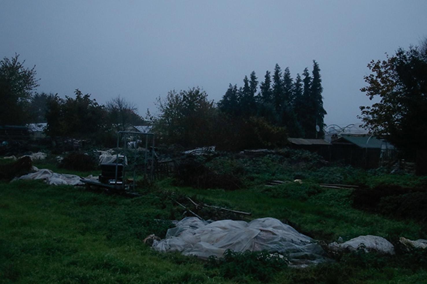 Feld am Spätabend, aus Urban Lanscapes, Nathalie Heinke