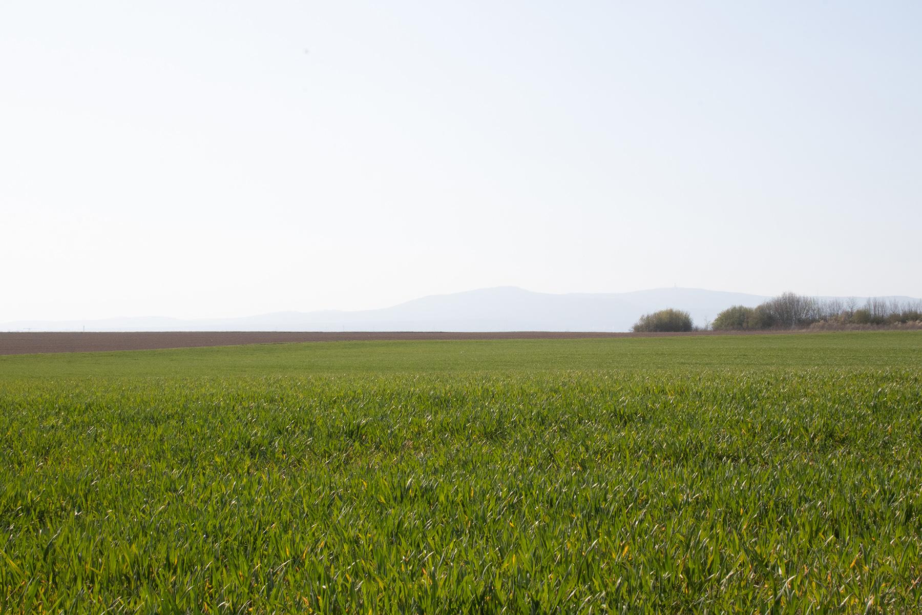 Landschaft Frühling